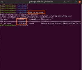 Std_install_xRDP_19.04_11