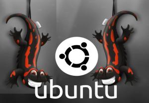 logo13_10