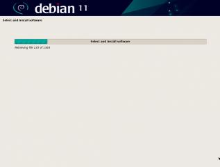 debian11_29