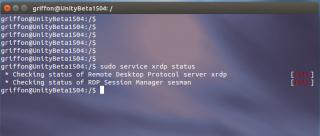custom_xrdp_15.04_4.PNG