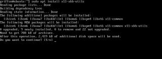 UbuntuServer29