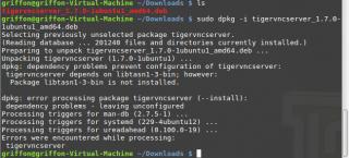xrdp_LinuxMint_3