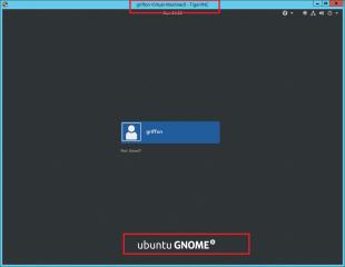 UG17.04-StartupVNC_062